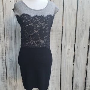 Loft XS Bodycon Lace Short Sleeve Sweater Dress